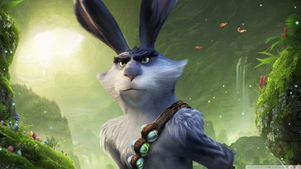 rabbit wallpaper HD10
