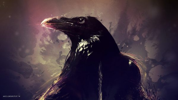 ravens-wallpaper-HD7-600x338