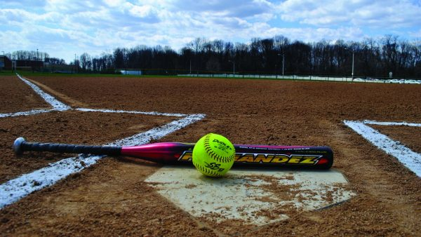 softball-wallpaper-HD6-600x338