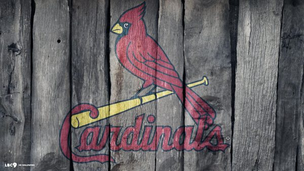 St Louis Cardinals tapeter HD1