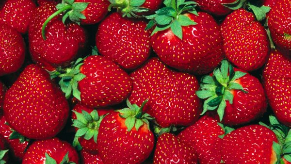 strawberry wallpaper HD1