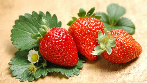 strawberry-wallpaper-HD6-600x338