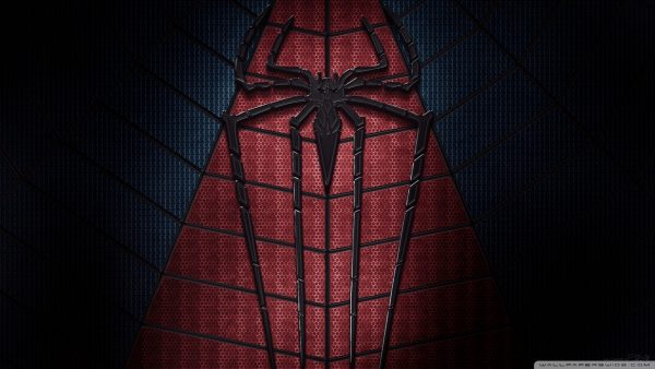 de geweldige Spider Man 2 wallpaper HD7