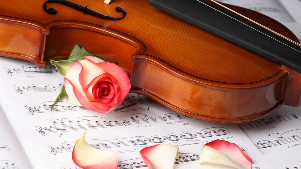 violin wallpaper HD5