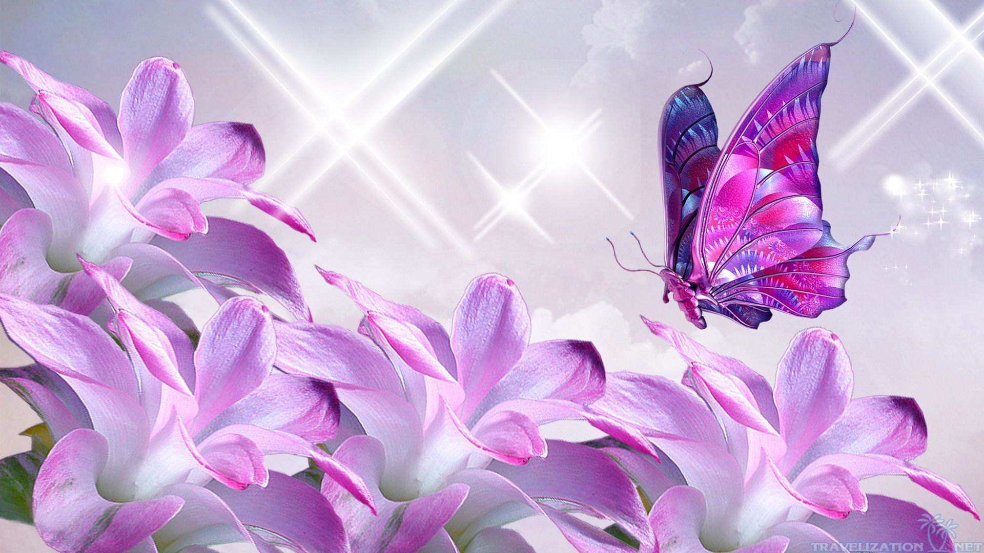 most beautiful flowers wallpapers butterflies - photo #33