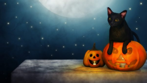 wallpaper halloween HD8
