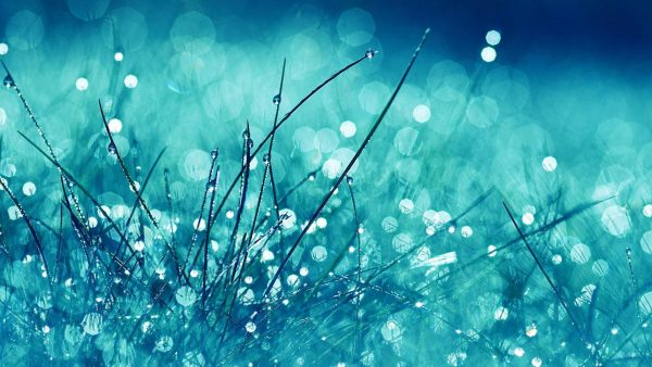 wallpaper-water-HD7-2-600x338