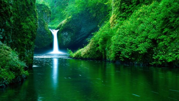 wallpapers-hd-nature-HD2-600x338