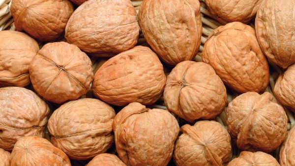 walnut wallpaper HD5
