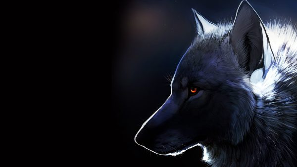 wolves wallpaper HD1