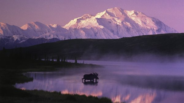 alaska-wallpaper-HD9-1-600x338