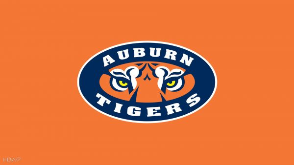 auburn-wallpaper-HD4-600x338