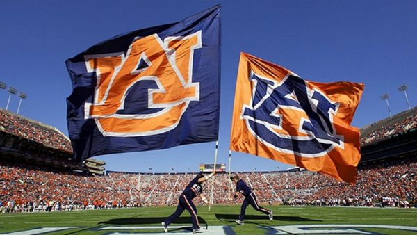 auburn-wallpaper-HD8-600x338