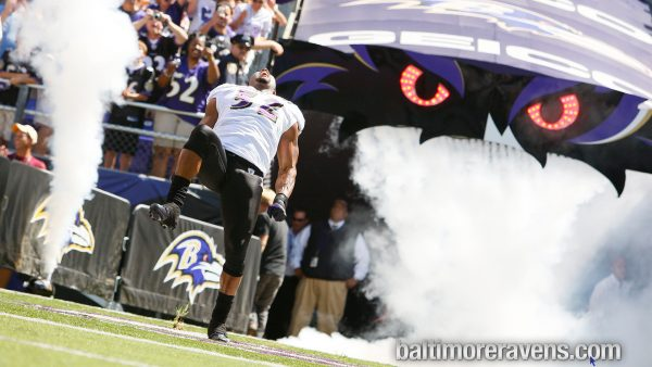 Baltimore Ravens wallpaper HD9
