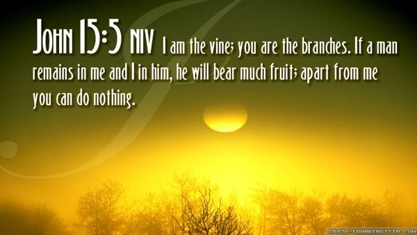 bible verses wallpaper HD1