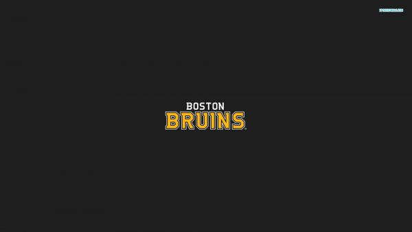 bruins wallpaper9