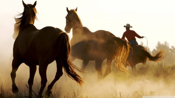 country-wallpapers8-600x338