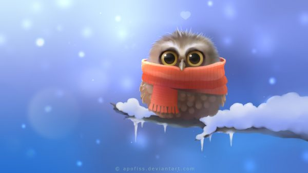 mignon hibou wallpaper6