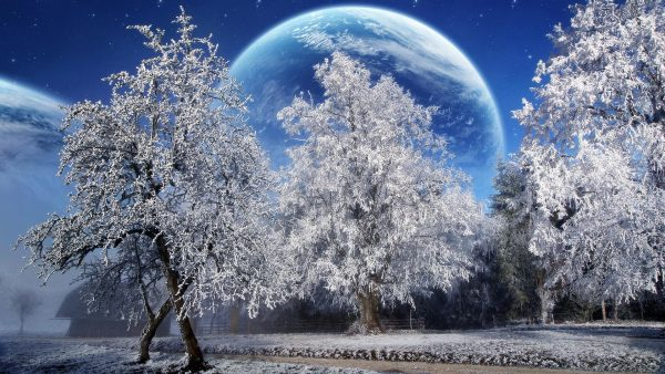 gratis winter wallpaper HD1