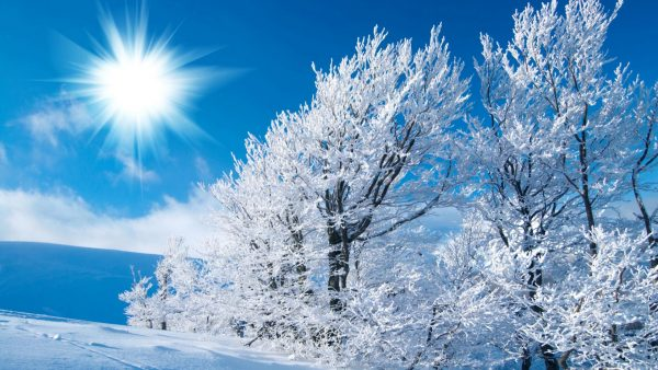 gratis winter wallpaper HD2