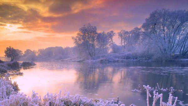 gratis winter wallpaper HD8