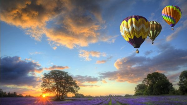 hot air balloon wallpaper HD5