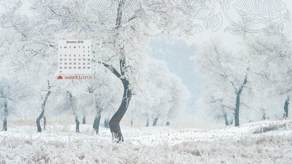 january wallpaper8