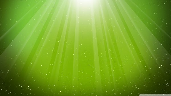 lime green wallpaper7