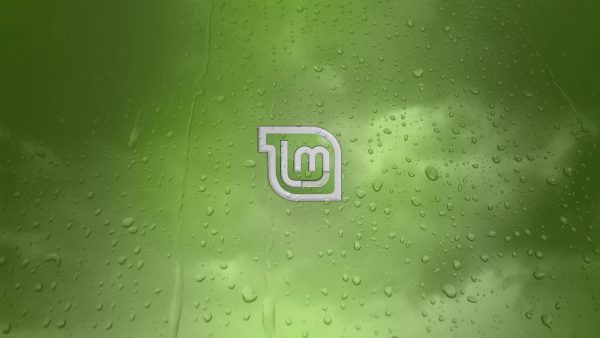 menthe wallpaper6