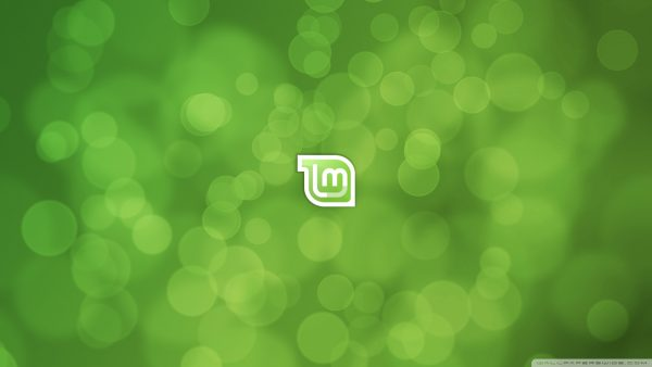 menthe wallpaper9