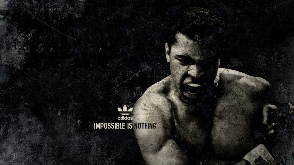 muhammad ali wallpaper4