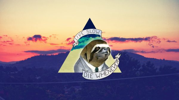 sloth-wallpaper8-600x338
