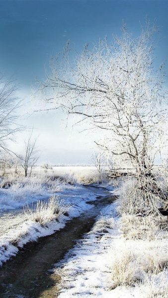 winter iphone wallpaper HD3