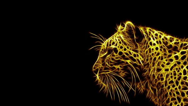 animal-print-wallpapers-HD6-600x338