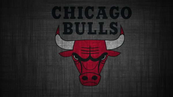 chicago bulls logo wallpaper HD2