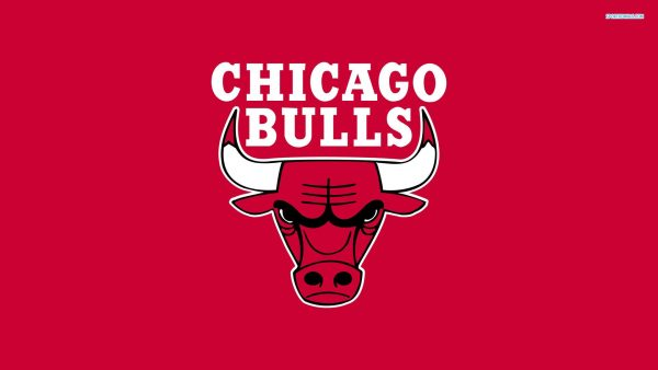 chicago bulls logo wallpaper HD4