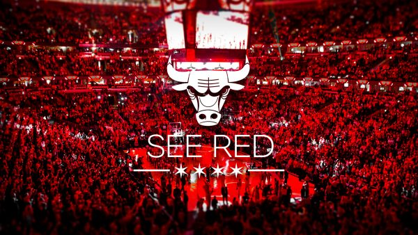 chicago bulls logo wallpaper HD8
