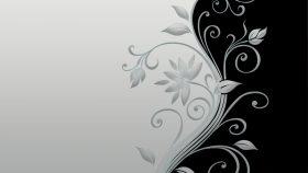 dark floral wallpaper HD
