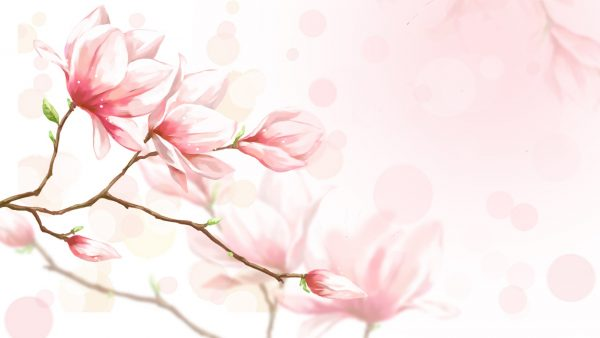 feminine-wallpaper-HD1-600x338