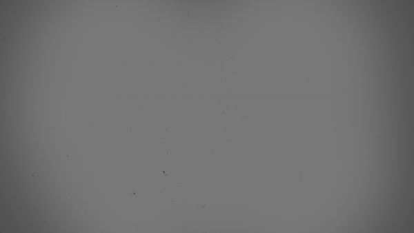 light-gray-wallpaper-HD5-600x338