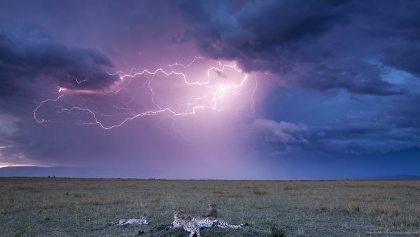 lightning-wallpapers-HD6-600x338