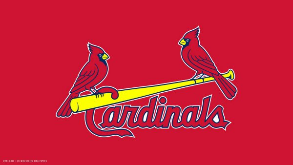 stl-cardinals-wallpaper-HD7-600x338