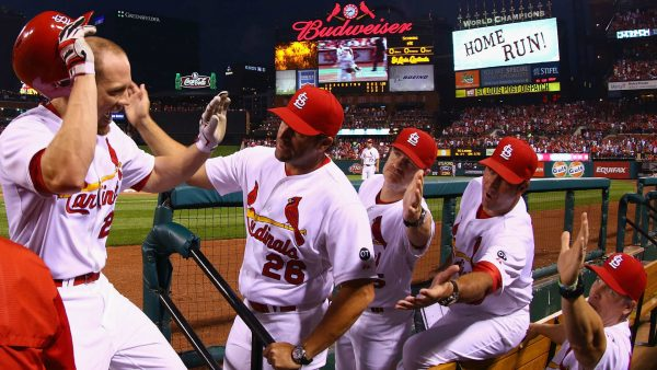 stl-cardinals-wallpaper-HD9-600x338