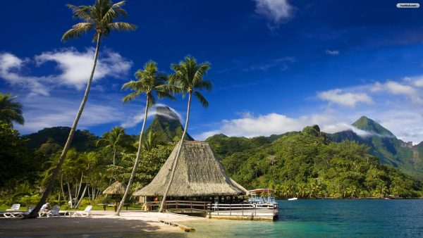 tropical-island-wallpaper-HD5-600x338