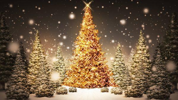 white-christmas-wallpaper-HD3-600x338