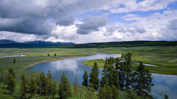 yellowstone-wallpaper-HD7-600x338