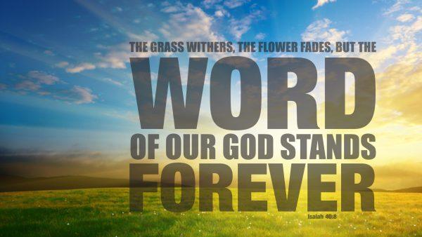 bible-verses-wallpaper1-600x338