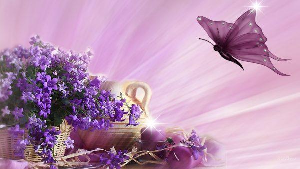 butterfly-live-wallpaper5-600x338