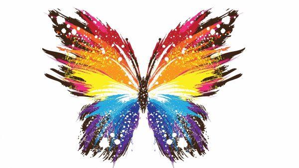 butterfly-live-wallpaper7-600x338