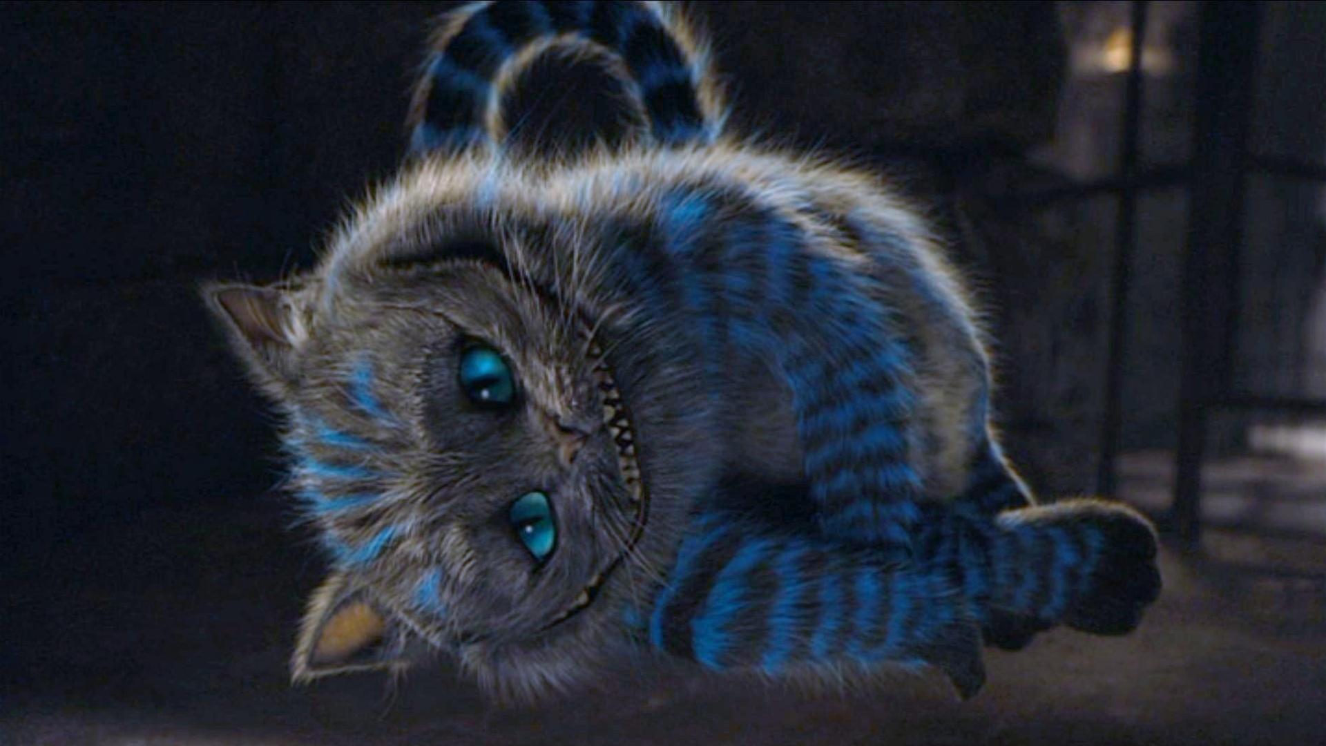 Cheshire Cat Wallpaper Samsung